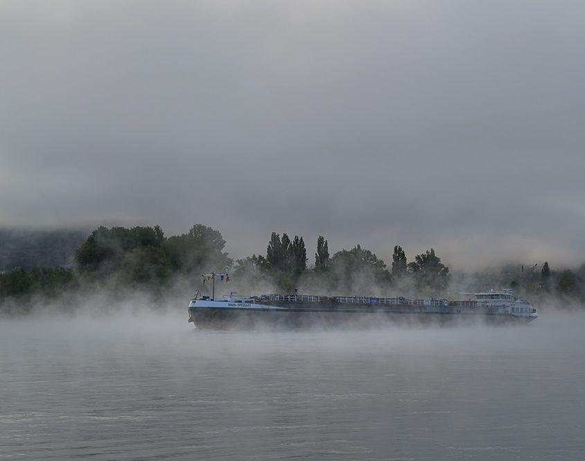 Morgennebel am Rhein bei Bad Breisig