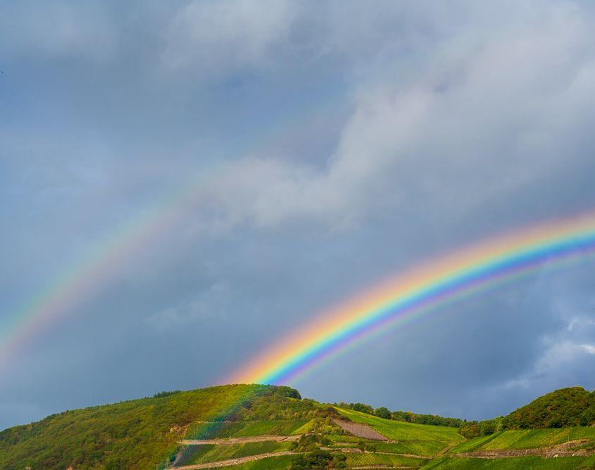 Regenbogen im Rheintal