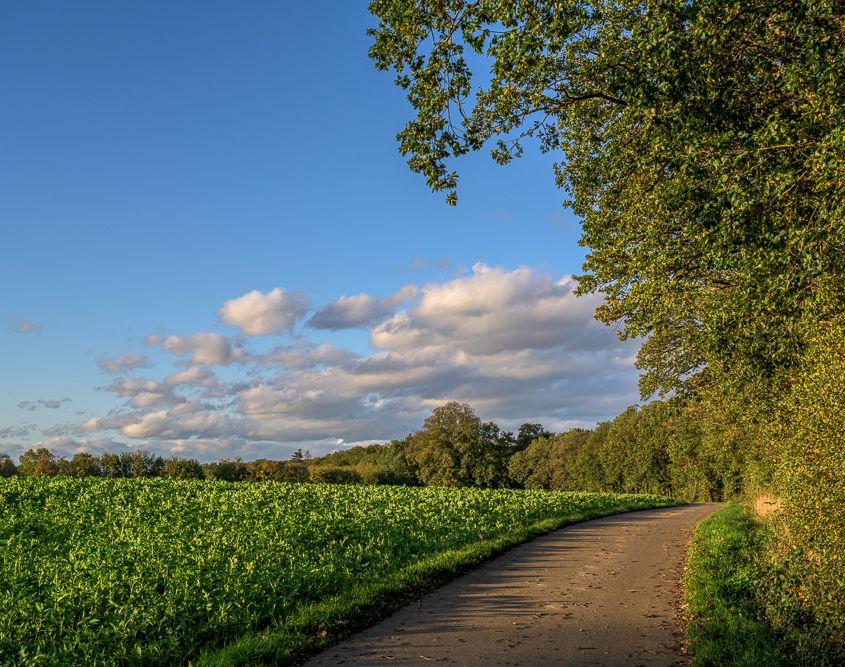 Herbstnachmittag auf Kirres