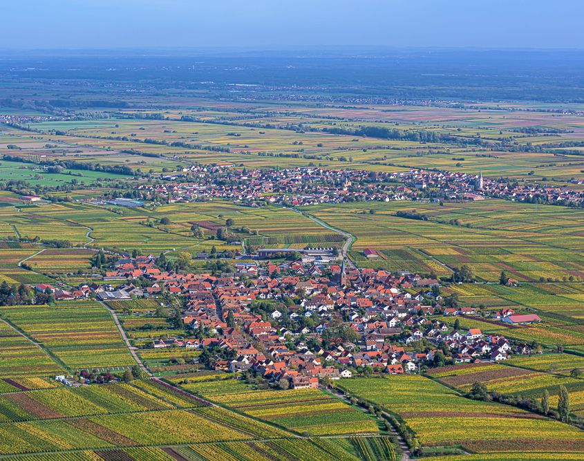 Blick vom Rietberg/Pfalz