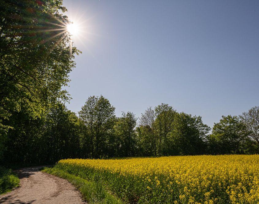 Draussen, Heimbach-Weis