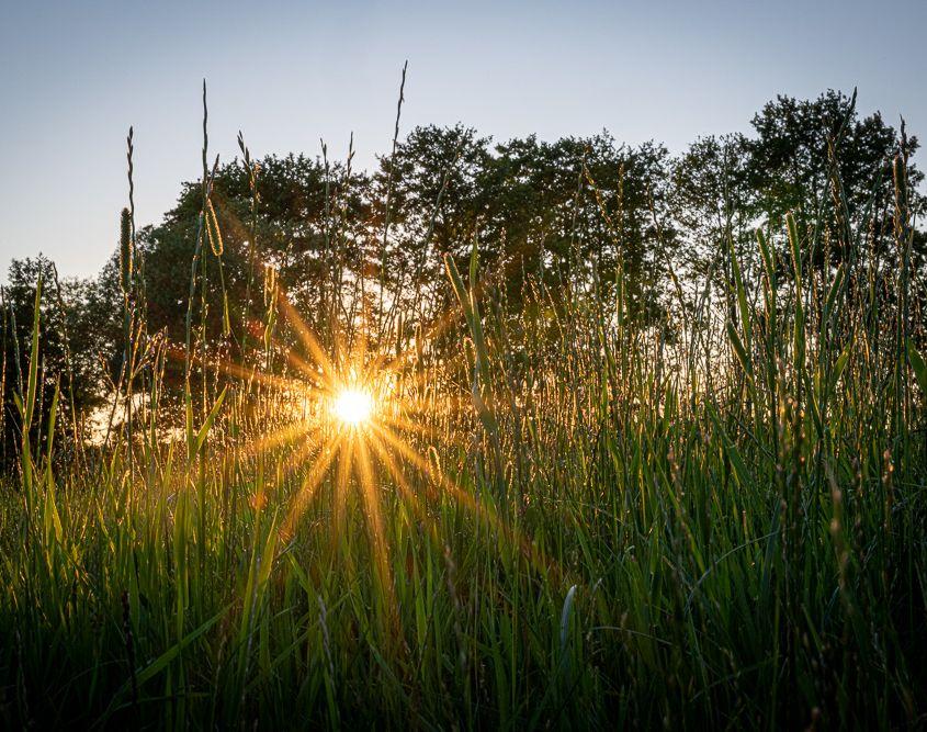 Sunset, Schwandorf