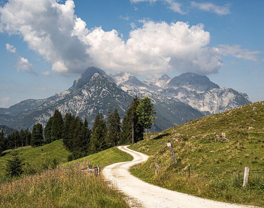 Sommer in den Bergen, Hirschbichl