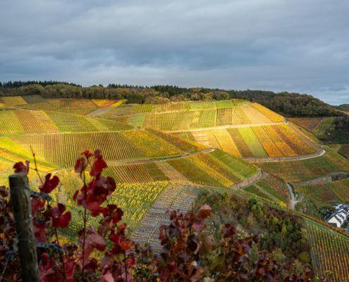 Bild des Monats Oktober 2020: Dernau im Ahrtal
