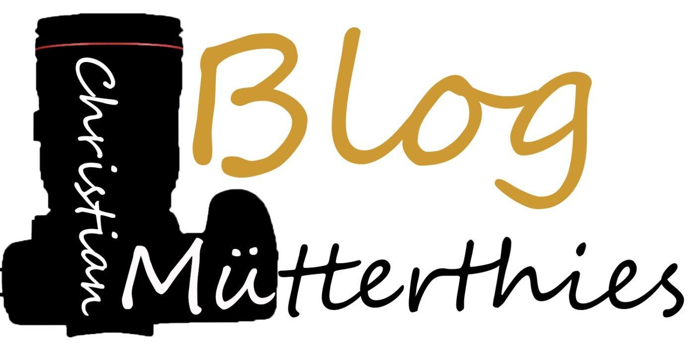 """Christian-Mütterthies-14: Logo """"muetterthies.de"""""""