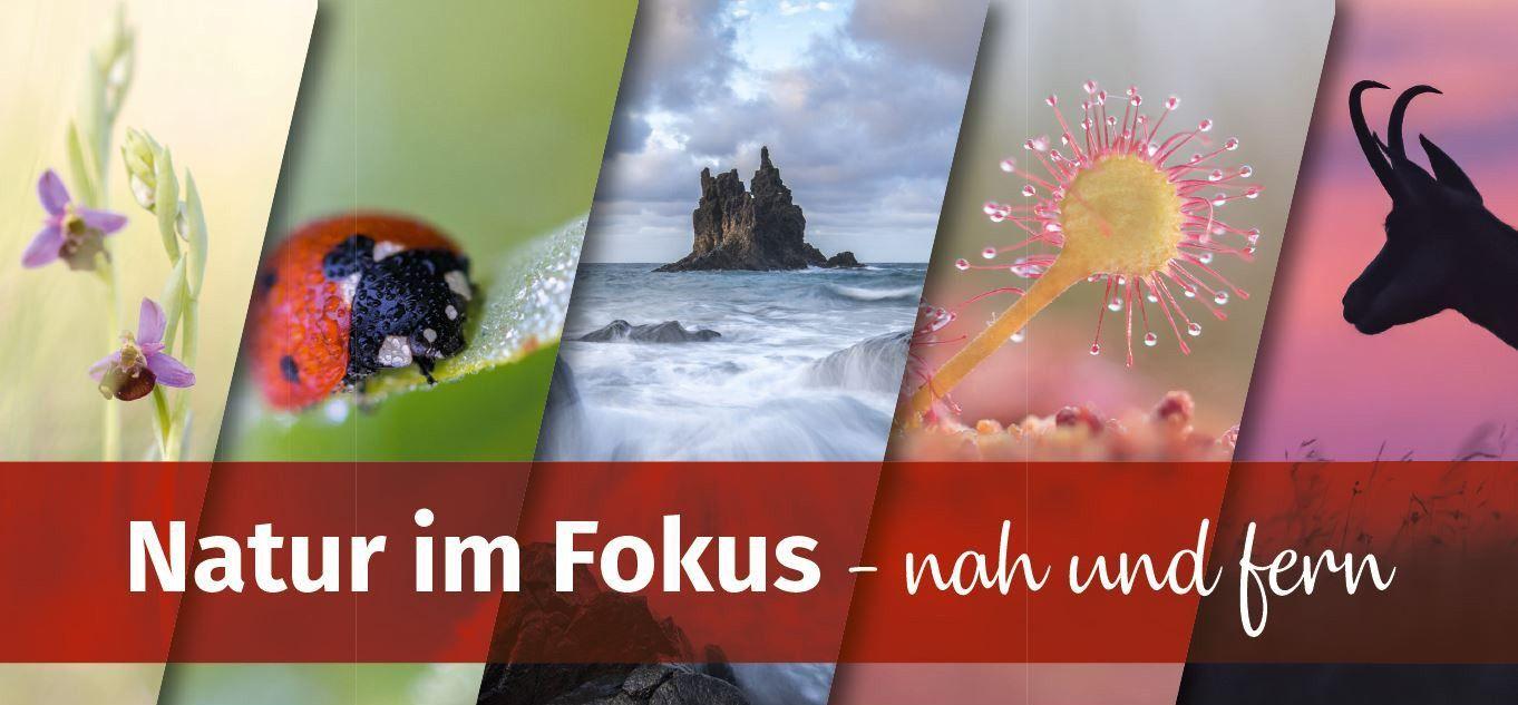 "Christian-Mütterthies-15: Logo ""Natur im Fokus"""